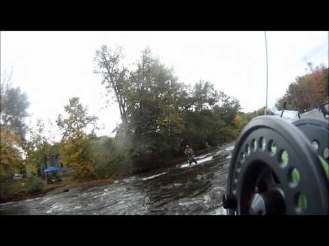 Salmon Fishing Salmon River Pulaski NY (First Person) HUGE King