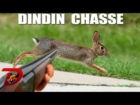 chasse-petit-gibier-ouverture-2013-pisode-1.html