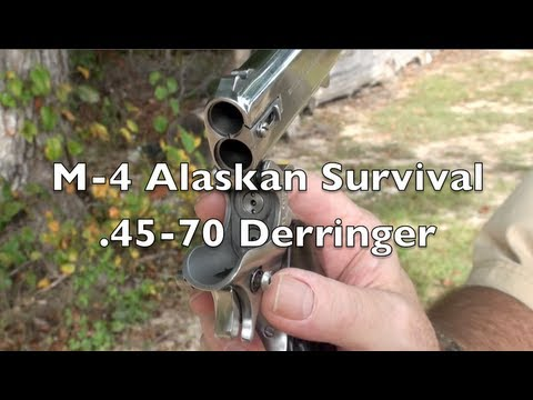 .45-70 Derringer Shooting