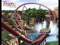 Parque Busch Gardens Tampa,Florida: Sheikra - DisneyWorldOfertas.com