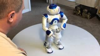 U.A.V Advertising Nao Next Gen Robot