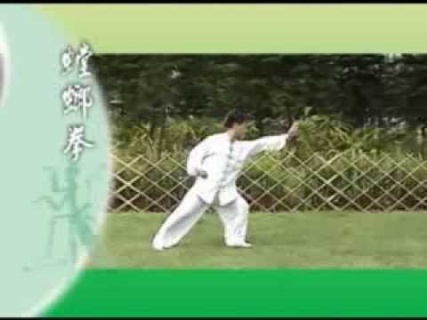 北螳螂《崩步》麥永聰師傅 演練  Northern Praying Mantis Kung Fu by Shifu Edward Mak