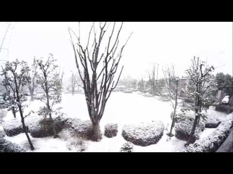 first snow Tokyo 2015