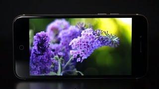 Видеообзор стильного смартфона teXet iX-maxi