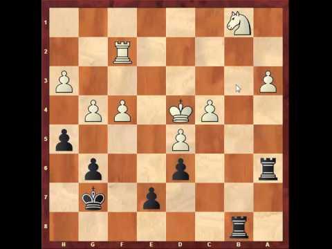 Chess: Loek Van Wely 2445 - Susan Polgar 2500, Benko/Volga Gambit http://sunday.b1u.org