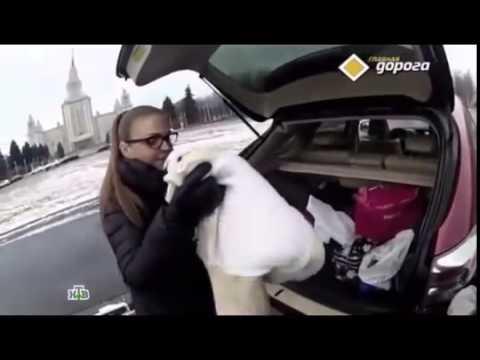 "Марина Девятова в программе ""Главная дорога"""
