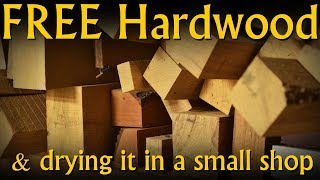 Free Wood & How to Dry It for Woodworking in a Small Shop