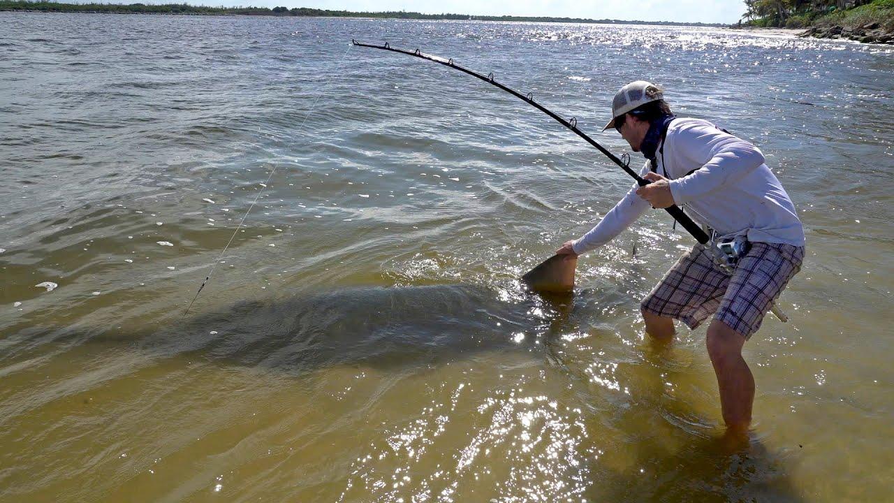 [Badass Fisherman Catches 17-Foot, 700-Pound Endangered Sawfish] Video