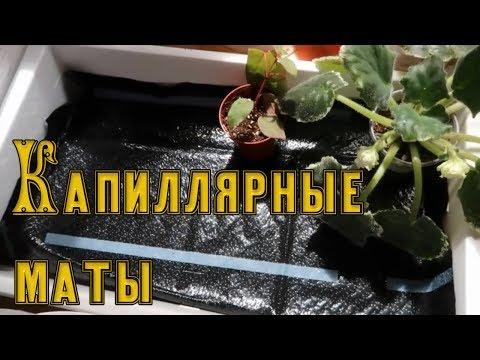 КАПИЛЛЯРНЫЕ МАТЫ / Капиллярный полив растений