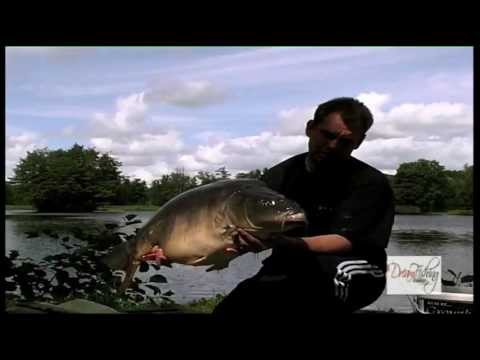 Carp Fishing - Free Spirit Etang De Pierre video
