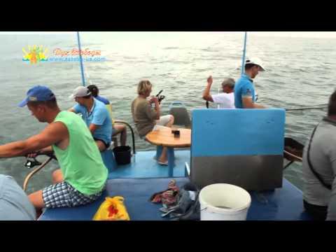 рыбалка на затоке видео