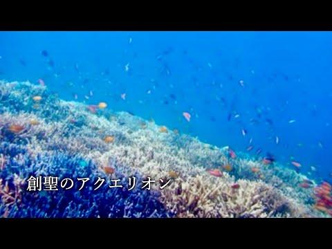 【民謡日本一】創聖のアクエリオン 三味線で【カバー】