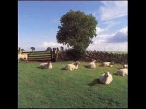 The KLF - Elvis on the radio, steel guitar in my soul