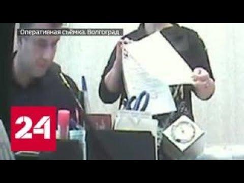 Город красоты: как в Волгограде псевдоврачи выманивали деньги у клиентов - Россия 24
