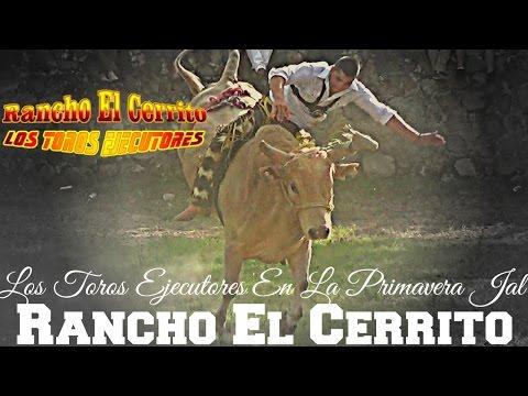 profetas-en-sus-tierras-rancho-el-cerrito-en-la-primavera-jalisco.html