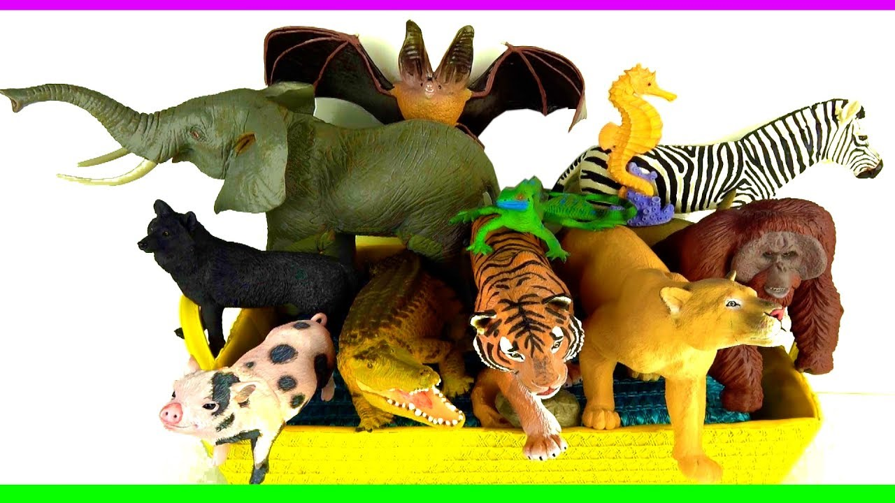 Mixed up zoo animals