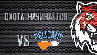 Amur - Lahti Pelicans / 5.08.16 / Full Game