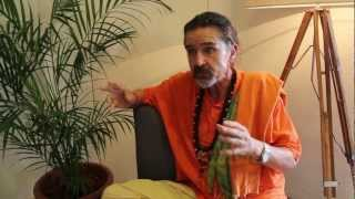 Swami Pujan talks about Living food in the year 2013