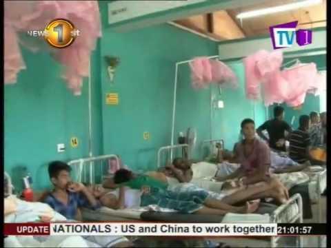 dengue outbreak kinn|eng