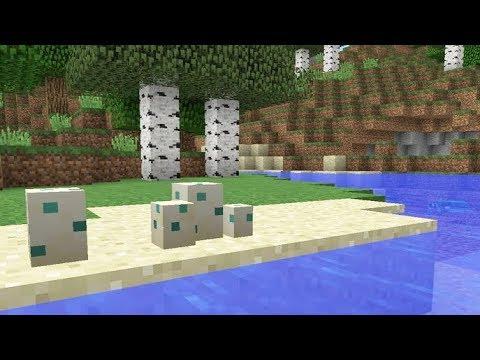 Minecraft 1.14 News: Turtle Eggs?