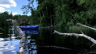 Tenkara Fishing - Solo Bushcraft Wild Island Camp - Finnish Laavu, Camp Cooking, Painting