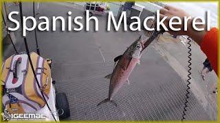 [Florida Fishing #45] Okaloosa Island Fishing Pier - Destin, FL (May 13, 2016) -  Spanish Mackerel