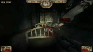 C2L3 Asylum - record speedrun painkiller [RJ19]