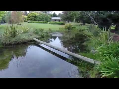 Lavender Fields Luxury - Adelaide Hills Country Cottages