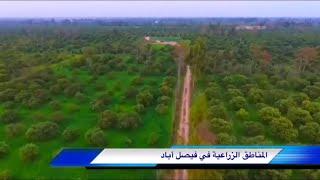 فيصل أباد باكستان |Faisalabad Pakistan
