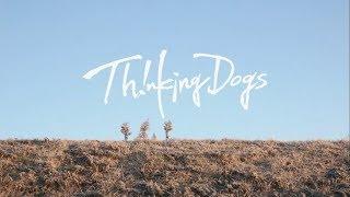 Thinking Dogs - Sonna Kimi Konna Boku PV (Karaoke + English Lyric)