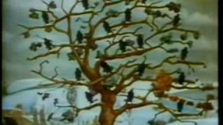 Watch Super Furry Animals Cabin Fever video