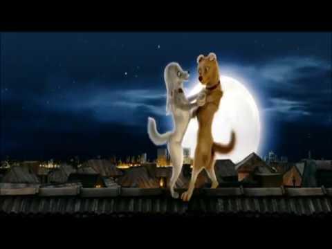 Roadside Romeo Rooftop Romance HD (Nightcore)