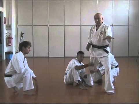 Il Potere Segreto Delle Posizioni Zenkutsu Dachi E Kokutsu Dachi video