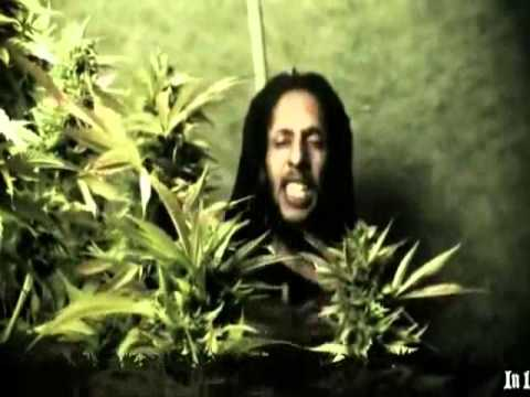 Julian Marley - Boom draw Music Videos