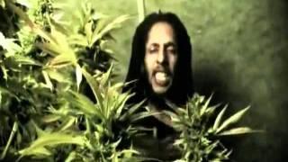 (7.46 MB) Julian Marley - Boom draw Mp3