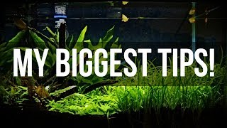 Planted Aquariums for Beginners | My Biggest Tips