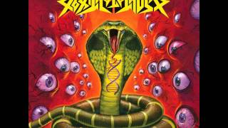 Watch Toxic Holocaust Awaken The Serpent video
