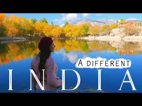 INDIA TOURIST: FOREIGNER INDIAN ROAD TRIP HIMACHAL PRADESH PT 2 | TRAVEL VLOG IV