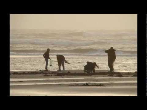 Clam Digging in Ocean Shores, WA (Feb 2013)