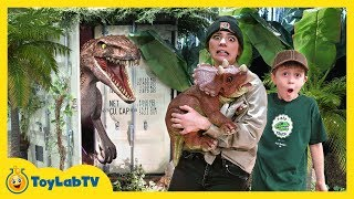 Dinosaur Baby Is Missing! Solve Clues in Mystery Dino Eggs & Escape Life Size Raptor Dinosaurs