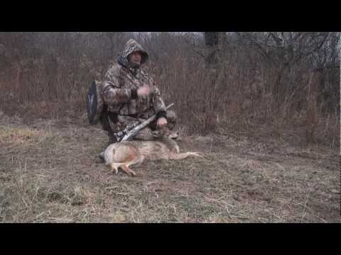Coyote Hunting in Ontario