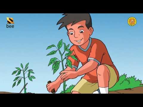 IPA Kelas 6 Semester 1 Keseimbangan Ekosistem