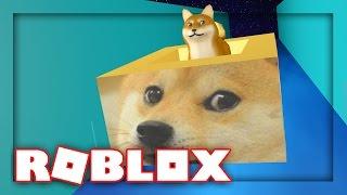 DOGE INSIDE OF A DOGE! | Roblox Ride a Box Down Stuff w/ MicroGuardian!