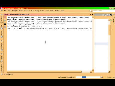 Tutorial básico Archivos binarios C HD