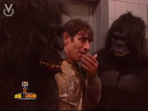 Que Locura : Broma Con Gorilas!