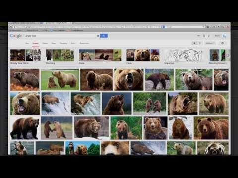 Google Image Search - Tech Tuesdays