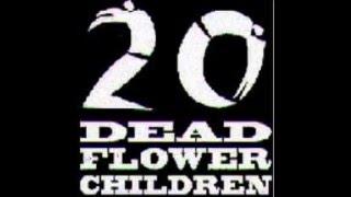 Watch 20 Dead Flower Children Greet The Machine video