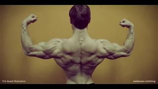 JEFF SEID - MOTIVATION 2017