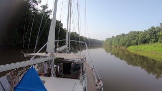 SLOW TV - Sailing Up the Maroni River, French Guiana - Sailing Vessel Delos
