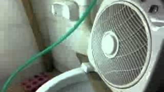 Indoor neuquen 3 despues de la remodelacion  con nuevo sistema de riego. :)